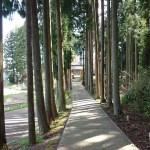 七尾にある山の寺寺院群の1つ「常通寺(じょうつうじ)」