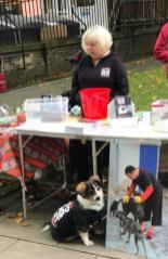 Dog Show Fun Day NoToDogMeat Adoptdontshop 07