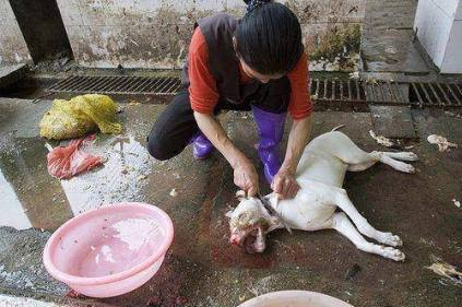 woman meat worker
