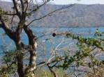 Laguna de Apoyo (1)