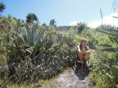 Cajamarca (6)
