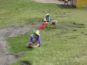 Cajamarca (62)