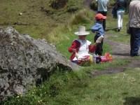 Cajamarca (81)