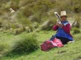 Cajamarca (89)