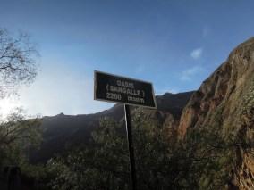 Colca kanion_Oasis (2)