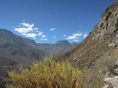 Colca kanion_on the way (16)