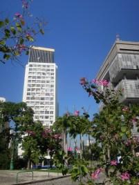 Rio de Janeiro (303)
