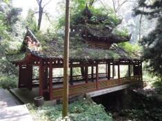 Zhangjiajie 46