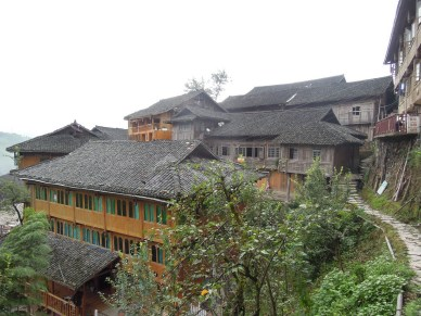 Longji - Dashai Village - Rice Fields (151)