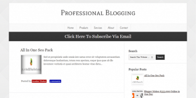 Professional-Blogging-Blogger-Template-410x205