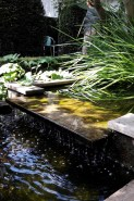 A gentle trickle of water in the pond at Garden 4
