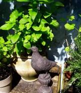 Detail of the edible garden - Garden 9