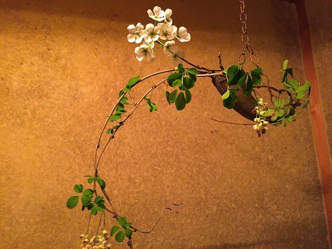 This ikebana arrangement exemplifies the expression of spring.
