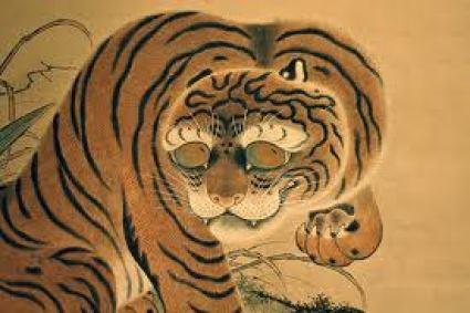 Tiger looking sheepish