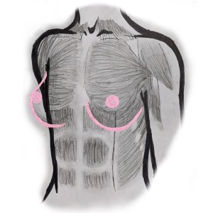 Anatomic diagram of breast tissue overlying the chest wall.