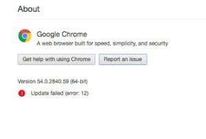 google chrome update failed error 12
