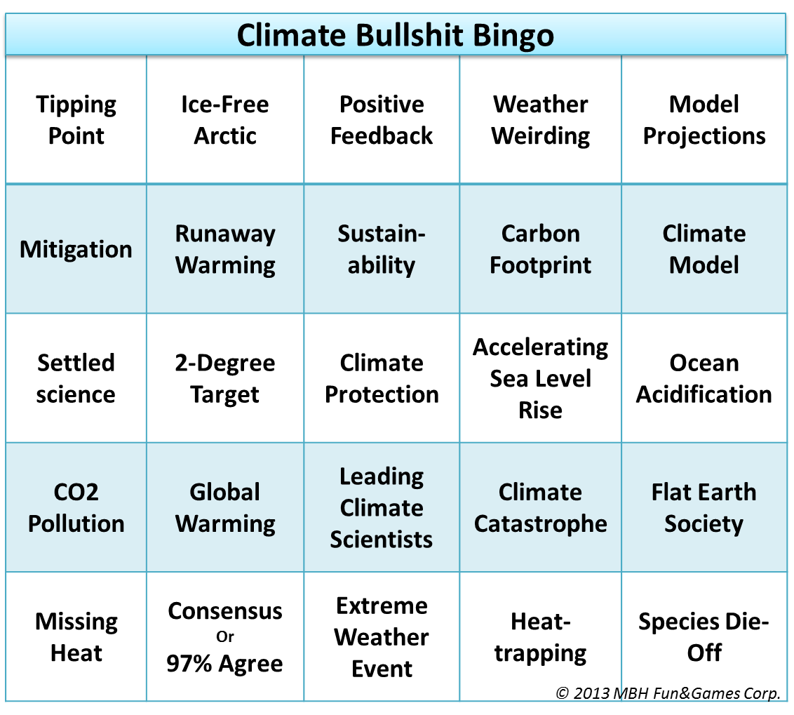 Image result for climate change bingo