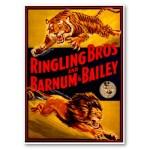 Ringling Bros. and Barnum & Bailey Circus 2011!