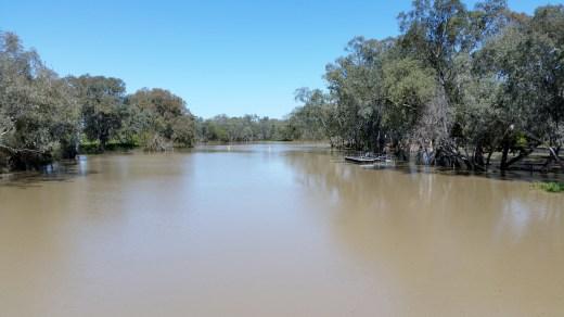 Bogan River on the rise!