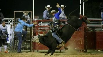 Bull Ride.