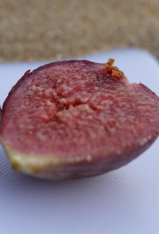 Adam's fig