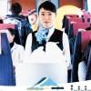【日本映画】「ロマンス」(タナダユキ監督)大島優子ファンじゃなくても十分楽しめる。ロマンスカーのアテンダントと中年男のロードムービー。