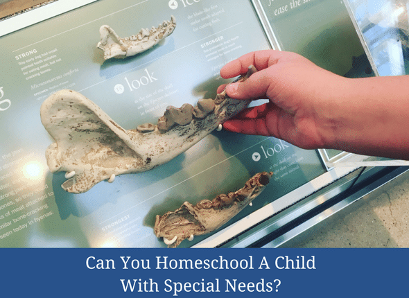 Can You Homeschool A Child With Special Needs #specialneeds #homeschool #homeschoolingwithspecialneeds #learningdifferences