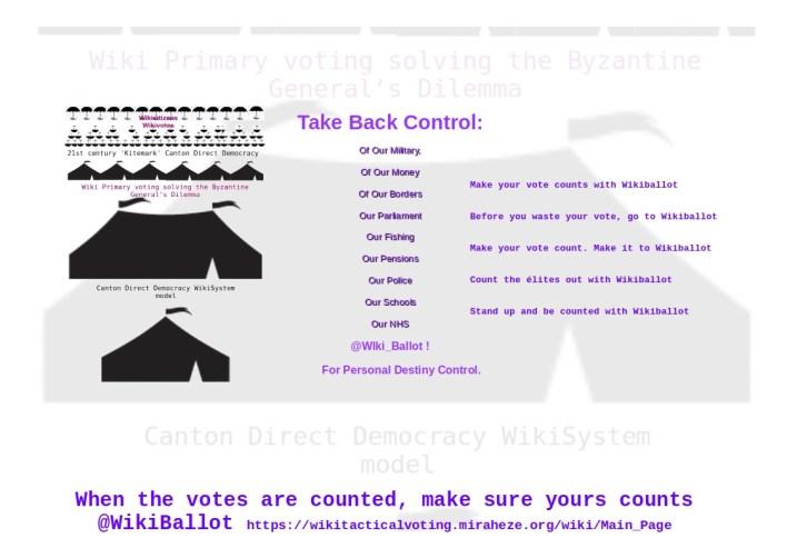 Wiki Ballot Info Graphic.jpg
