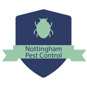 Call Or Text For An Appointment 925 732 2310 Nottingham Pest Control Your Pest Control Solutions Provider