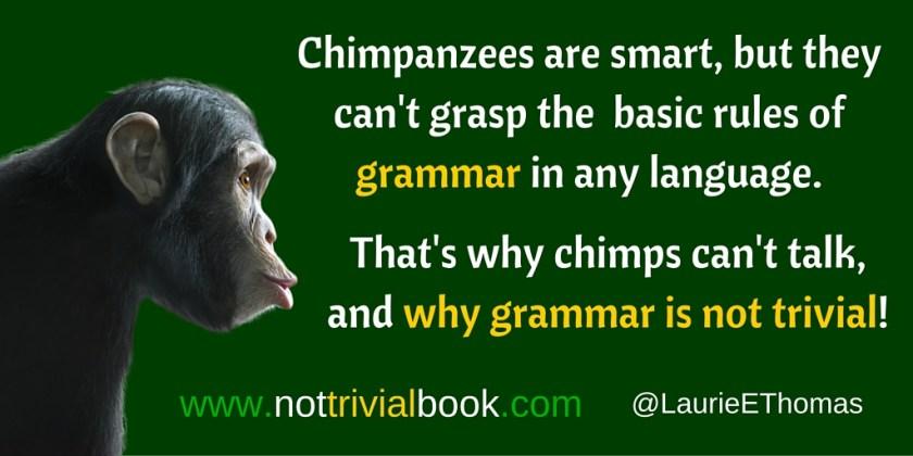 chimpgrammar