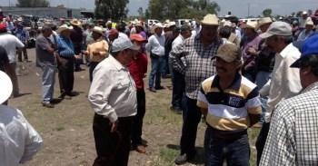 campesinos (2)