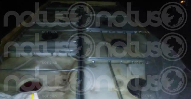 HUACHICOLERO (4)