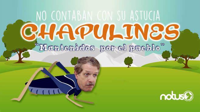 Romero Hicks Chapulines Portada2