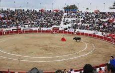 plaza de toros gto-notus