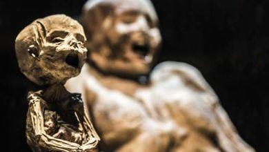 Photo of Polvo de momia -cuento-
