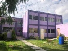 Instituto Down de Irapuato A.C. 1 (Personalizado)