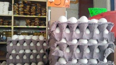Photo of Profeco multará negocios que incrementen sus precio de huevo