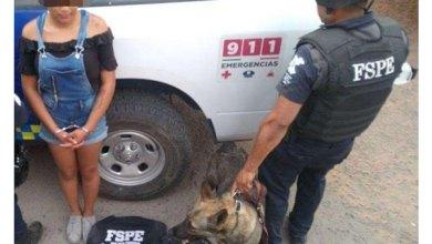 Photo of Detecta el oficial Fonsi de la Unidad Canina a una mujer con 30 dosis de marihuana