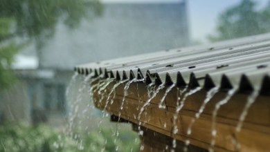 Photo of Durante las próximas 24 horas se espera lluvias aisladas en Guanajuato