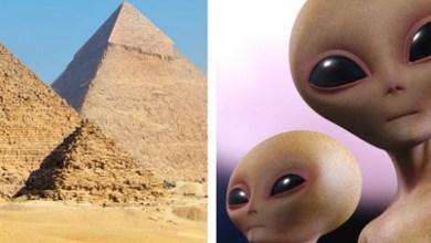 """Photo of """"Los extraterrestres construyeron las pirámides"""" de Egipto: Elon Musk"""