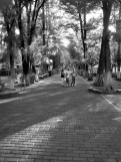 parque de convivencia irekua (2)