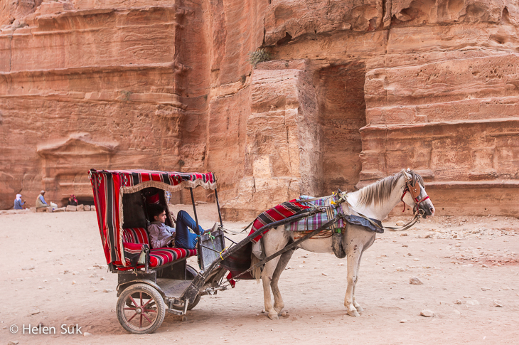 petra jordan pictures, horse carriage
