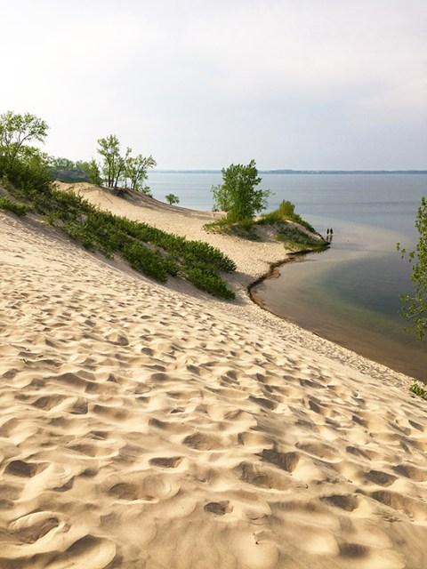 dunes beach at sandbanks provincial park