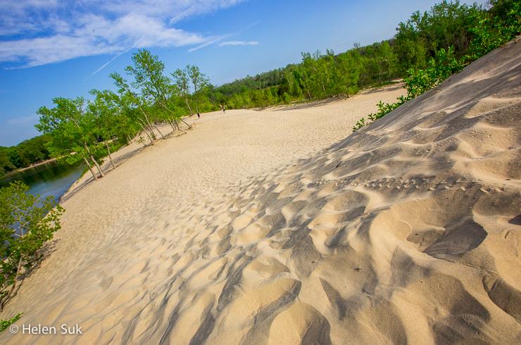 golden sand dunes at dunes beach in sandbanks provincial park