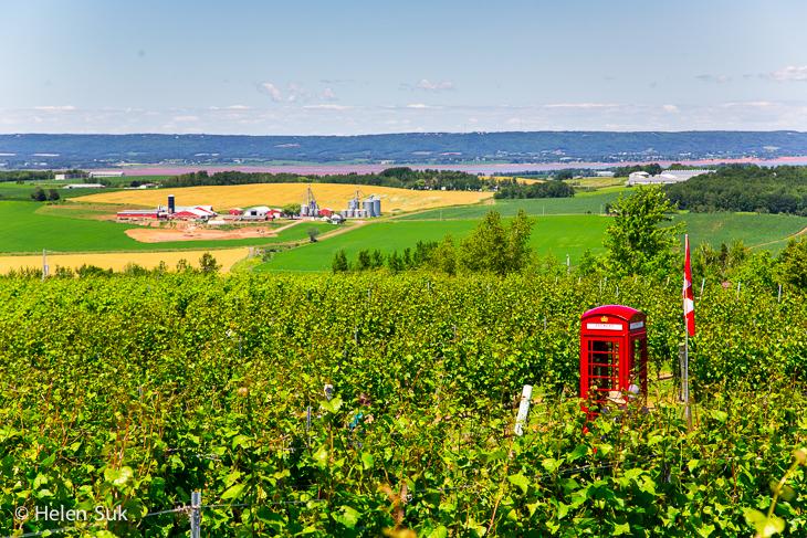 luckett vineyards winery in nova scotia