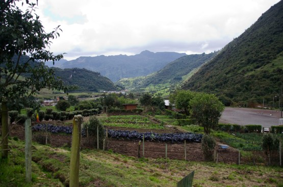 A small organic farm at the trail head.
