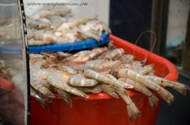 Fresh shrimp.