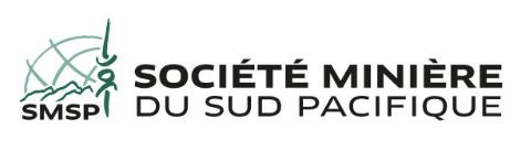 SMSP SOUS PROCÉDURE DE SAUVEGARDE : UN MODÈLE BRANLANT