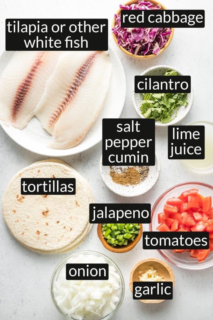 Plates showing all major ingredients: raw fish fillets, shredded red cabbage, cilantro, lime juice, spices, tortillas, chopped jalapeno, chopped tomatoes, onion, and garlic.