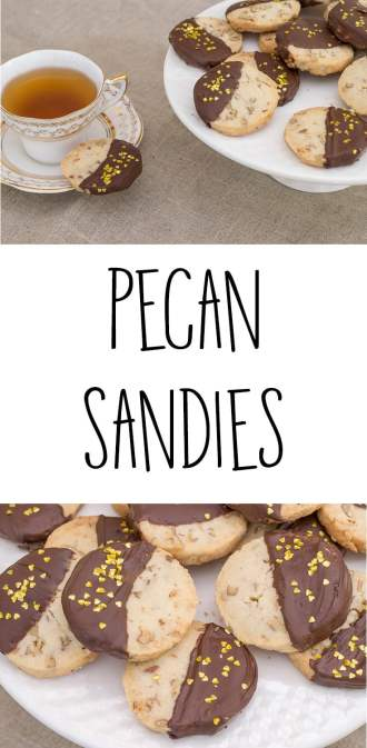 Recipe for Pecan Sandies. I used Angie Mosier's recipe from a 2007 edition of Food & Wine magazine for these delicious,delicate and light Pecan Sandies.
